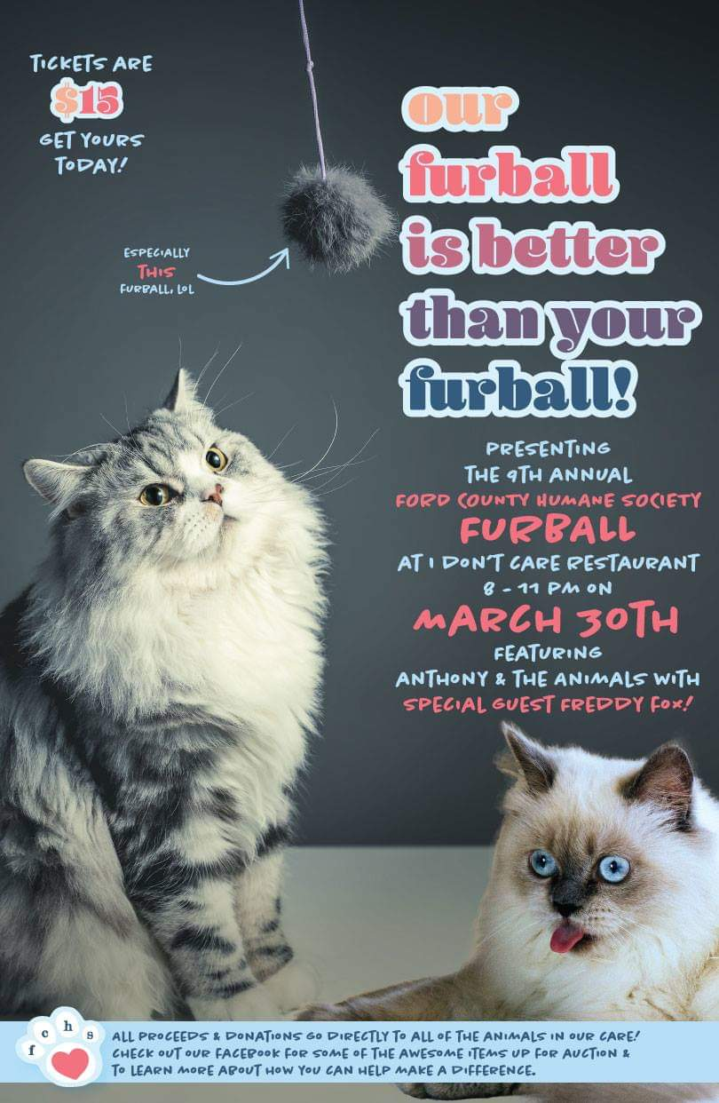 9th Annual Furball Flyer